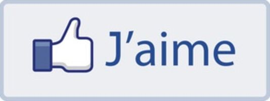 1693485_6_8e39_le-bouton-j-aime-de-facebook_0c59f350029cc401197754e00fdd79ac