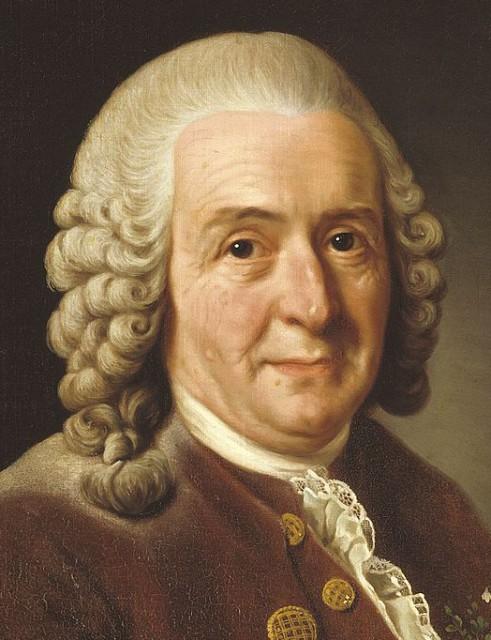 847px-Carl_von_Linné