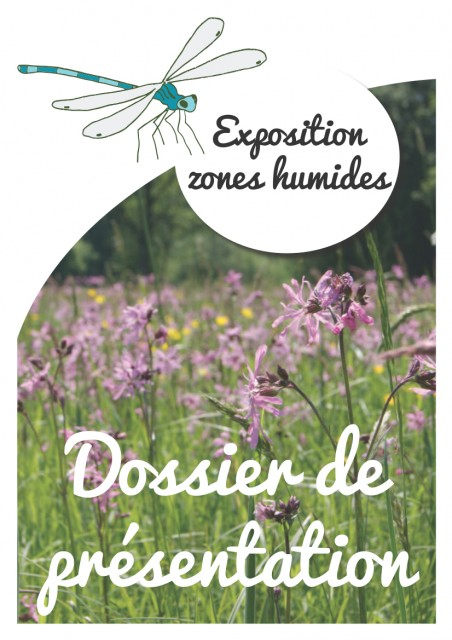 DOSSIER DE PRESENTATION1